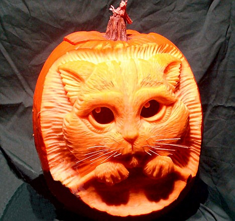 What would Shrek make of this Puss in a Pumkin?