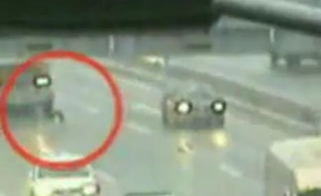 Horror: the first dog is hit by a truck as he tries to cross the road