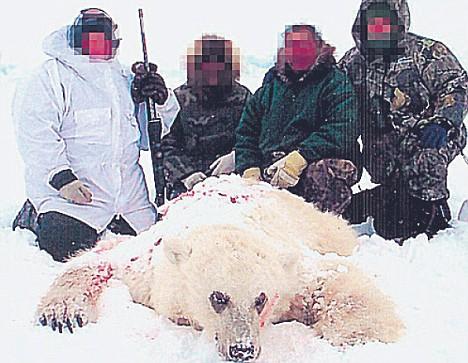 Polar Bear Hunting holidays