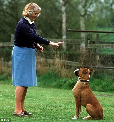 Barbara Woodhouse training a dog