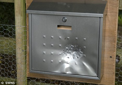 Attack: The shot-marked letterbox at the centre of the police investigation