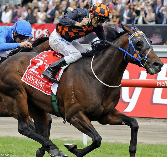Jockey Corey Brown rides Shocking to victory at yesterday's Melbourne Cup