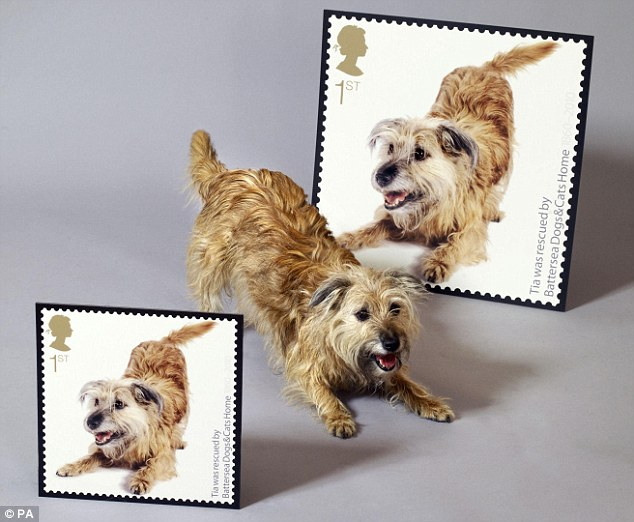 Tia reenacts her playful pose captured by a photographer for the new Royal Mail stamps