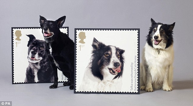 Herbie, left, and fellow canine Tafka sit patiently beside their own stamps