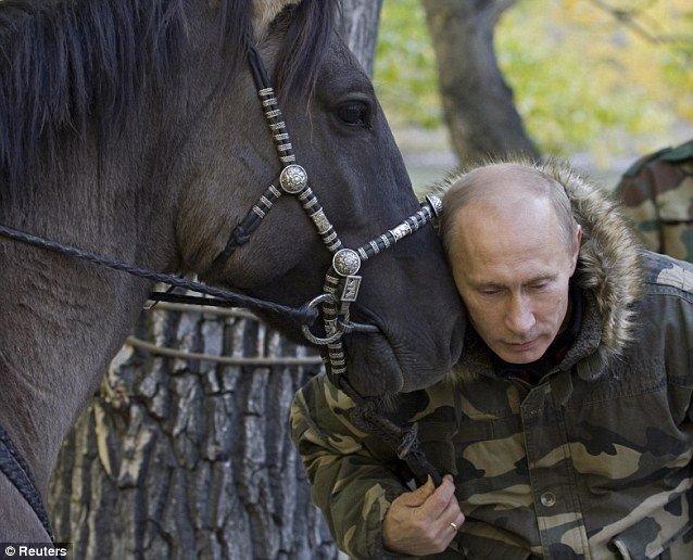 Horsing around: Vladimir Putin cuddles his horse during an expdition to monitor the habitat of snow leopards