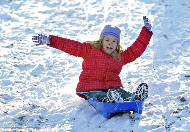 Fun for some: Sledgers in Green Park, Darlington, make the most of the fresh fall of snow today