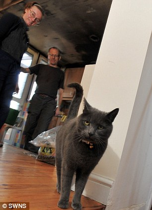 Grateful: Homeowners Sharon and Phil White with their treasured pet Pepper