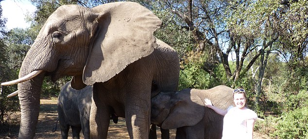 Amy Watkins with elephants