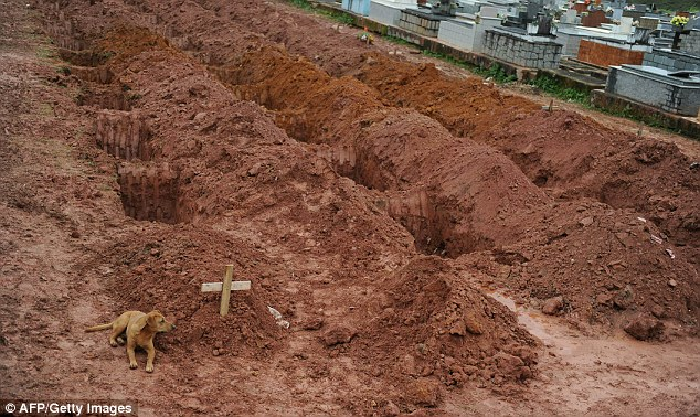 Toll: Workers at the cemetery in Teresopolis, near Rio de Janiero have dug dozens of graves to receive landslide victims
