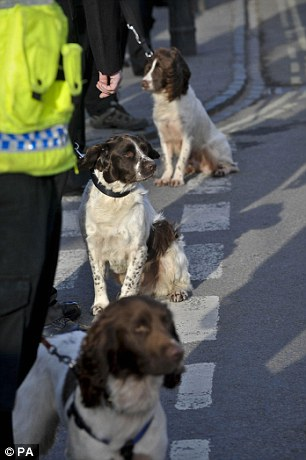 Police dogs and their handlers await the cortege for Lance Corporal Liam Tasker