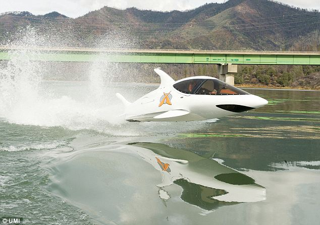 Lift-off: The personal submarine is fitted with an onboard camera so passengers can glimpse the world below the waves