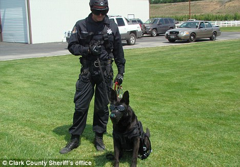K-9: Kane was killed in the line of duty in Washington state early Saturday after he was stabbed trying to apprehend a suspect who stole a car
