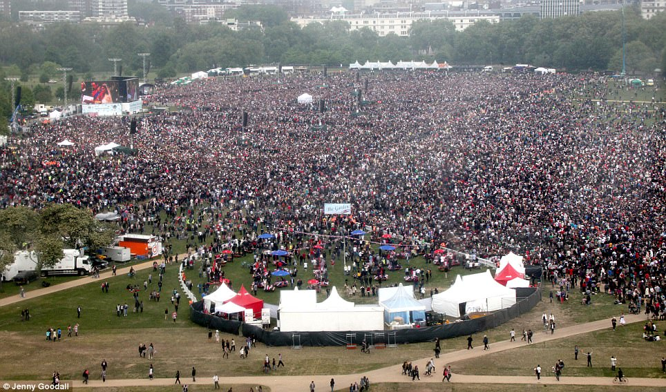 Wedding crowd: Hyde Park is eclipsed by the throngs who came together to watch Prince William marry Kate Middleton
