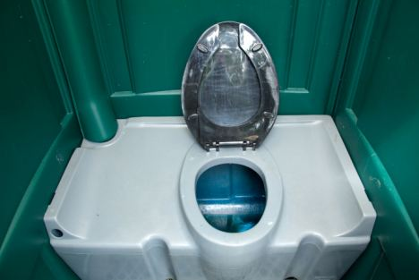 Shock: The female festival-goer lifted the loo seat last June to discover a man hiding in the tank