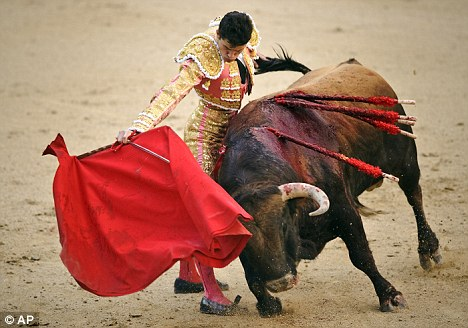 Gruesome: The traditional sport has been banned in Canary Islands, Catalonia and most recently, Ecuador