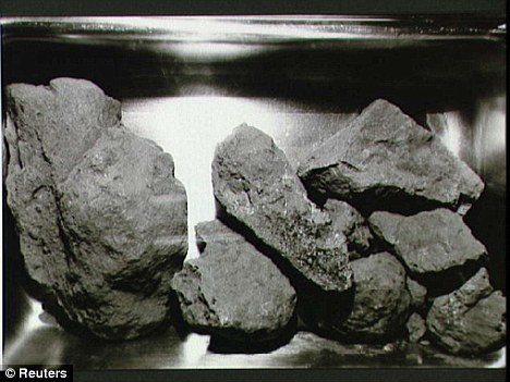 Lunar rocks like these, which were retrieved on the Apollo 11 mission, are of great value to collectors