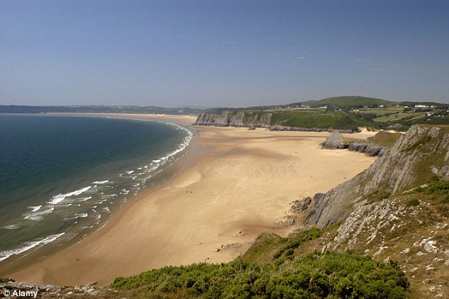 Ancient: Experts were studying the discovery at a secret location on the Gower Peninsula, near Swansea