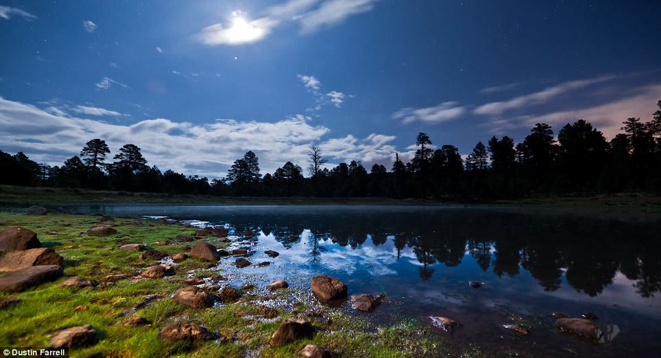 Mirror image: This lakeside shot shows the luscious green grass and the almost mystical water