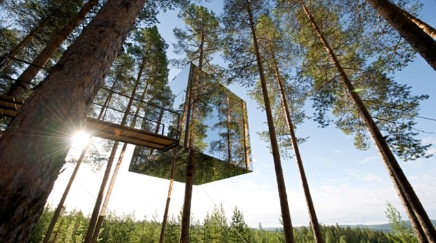 Thinking outside the box: The Treehotel, which recently opened 40 miles south of the Arctic Circle in Sweden is almost invisible among the trunks