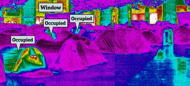 Lone protest: Just three tents are occupied, as shown by the yellow and red from the thermal imaging camera. Behind, similar colours highlight warmer shops and their windows. Empty tents are in purple