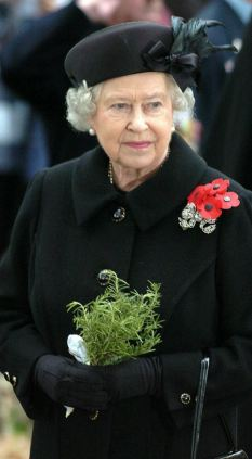 Neglected: The Queen was mysteriously not invited to the 65th anniversary of D-Day in 2009