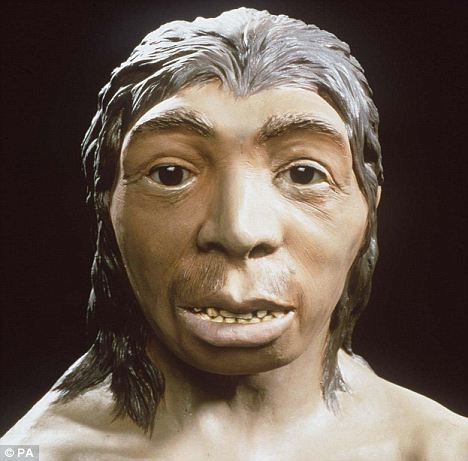 Neanderthal woman: Their line faded out because of interbreeding with humans