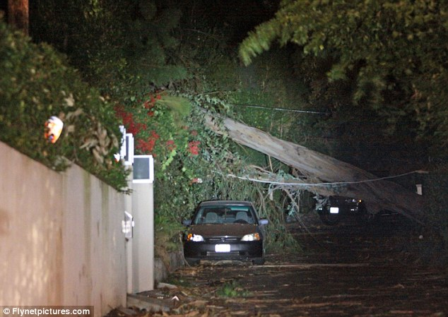 Crash landing: A eucalyptus tree crashed down on the Beverly Hills home of Hollywood couple Eric Dane and his pregnant wife Rebecca Gayheart last night after Los Angeles was battered by strong winds