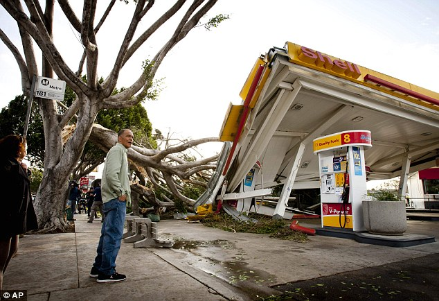 Other damage: Keith Curo stops to look over the damage caused by a fallen tree at a Shell petrol station on the corner of North San Gabriel Avenue and East Colorado Boulevard on Thursday in Pasadena, California