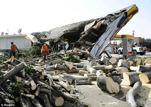 Hard work: City workers cut the felled tree into pieces to remove it from the gas station