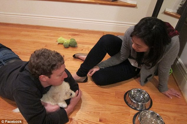 Loving: Mark Zuckerberg is pictured with his long-time girlfriend Priscilla Chan playing with their puppy