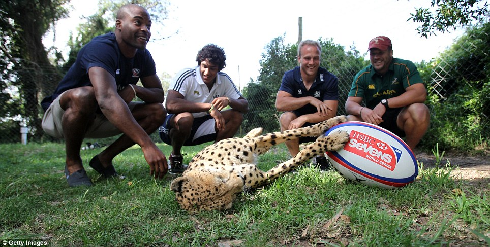 Scotland's Andrew Tumbull (2nd right) is among the players visiting the Kragga Kamma Game Park in South Africa during the World Sevens