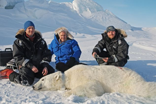 The documentary drew in eight million viewers transfixed by moving scenes of a polar cub being born