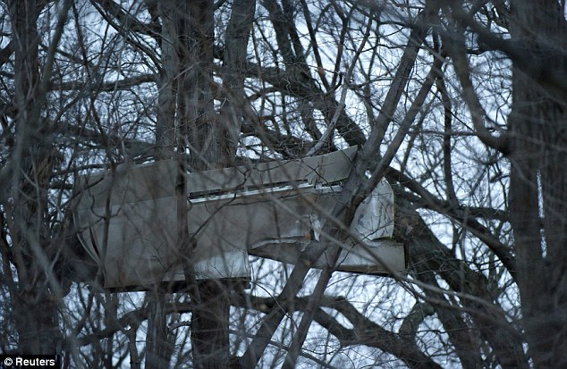 Still there: The plane wing is still stuck in a tree as dusk falls