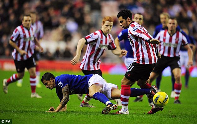 Grounded: Everton's Tim Cahill is brought down by Sunderland's Kieran Richardson