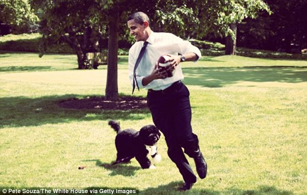 Playing the field: President Obama shows his athletic side, playing football with presidential pup Bo