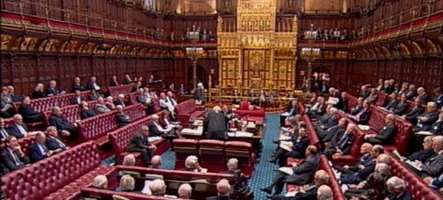 Peers voted through an amendment that will allow young people unable to work because of disability to receive ESA, even if they have substantial means