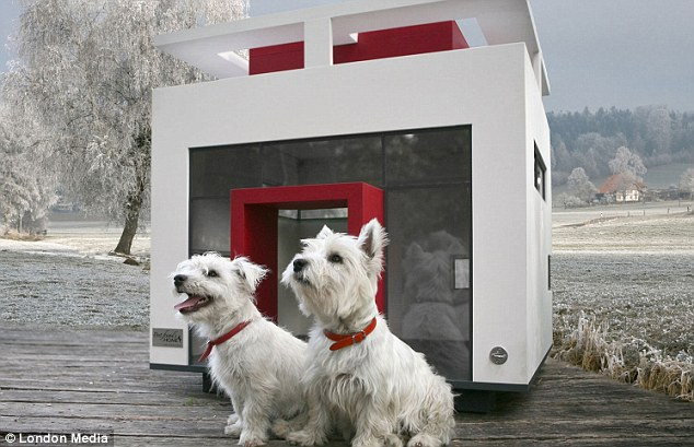 Top dog: The Cubix kennel has a contemporary feel for canines with a modern flare