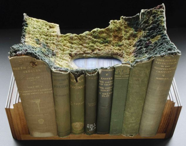 This amazing art work is part of a series of book sculptures or book carvings that have been created by Canadian artist Guy Laramee