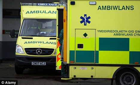 Long-serving ambulanceman Mr Hillier had been accused of an 'unprovoked assault' on the 20-year-old woman during the 999 emergency