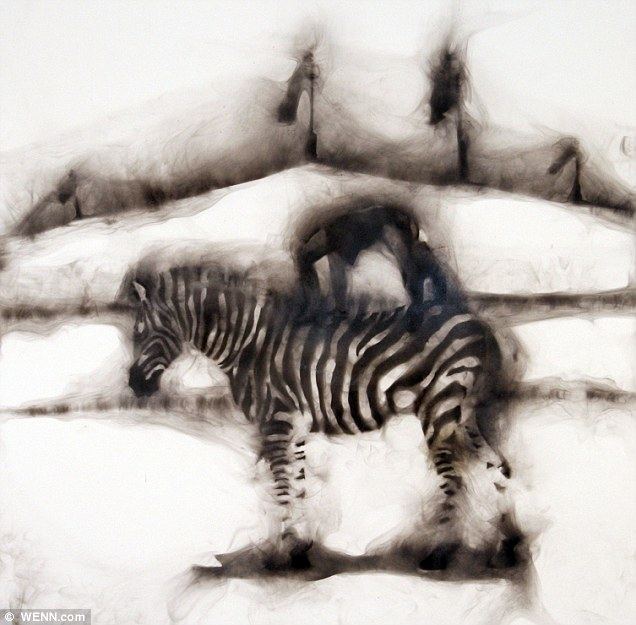 Anna Alinga Backbend on Zebra: The images are taken from a series called Smoke Rings