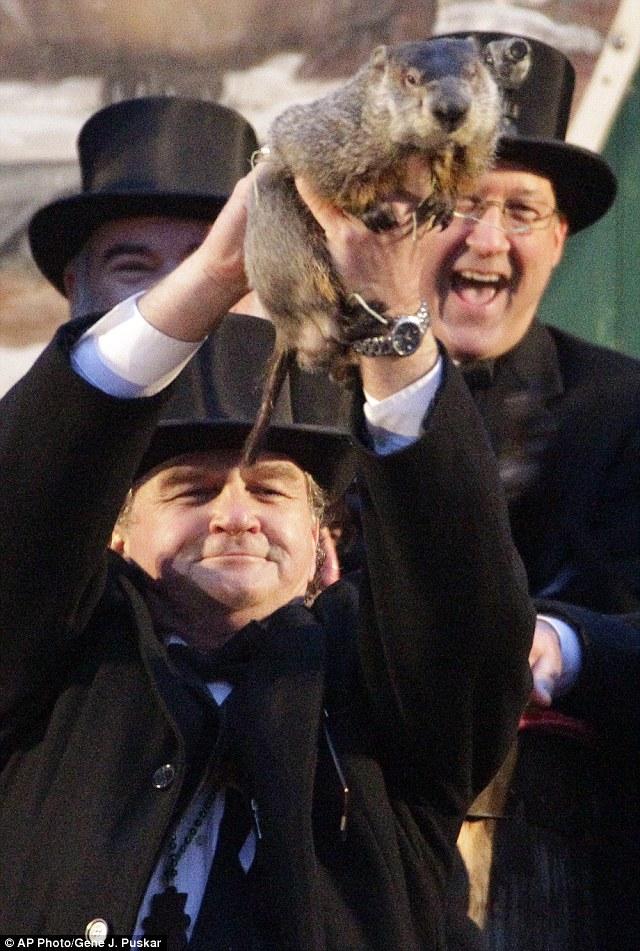 Forecasting hero: Groundhog Club handler John Griffiths, left, holds up Punxsutawney Phil, the weather prognosticating groundhog, during the 126th celebration of Groundhog Day on Gobbler's Knob in Punxsutawney, Pa. Thursday