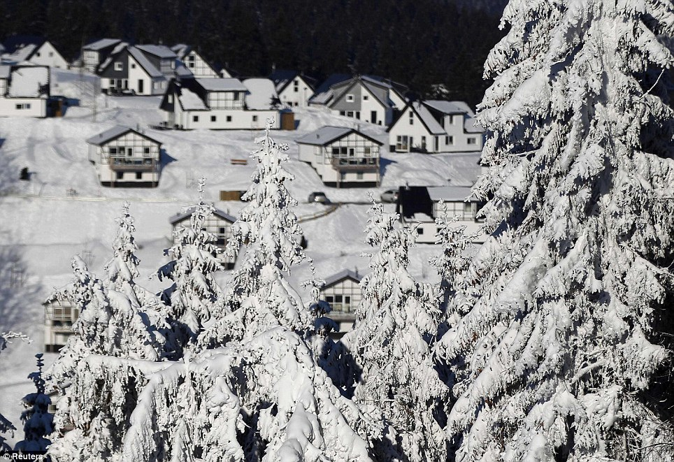 Trees weighed down by heavy snow in the German city of Winterberg