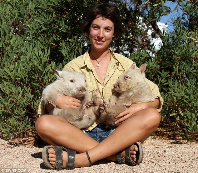 Feeling better: Rescue Centre manager Val Salmon with the Wombats she has nursed back to health