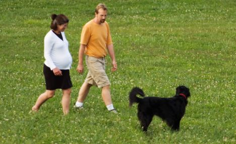Pregnant paws: An international research team has found that dog walking is an effective way for pregnant women to achieve 30min of exercise a day