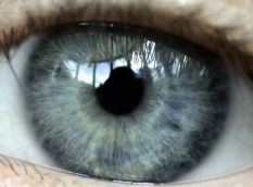 The iris recognition scanners were heralded as a time-saving tool
