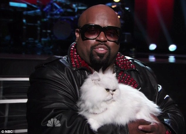 The white cat: Cee Lo and his white kitty only made one appearance on this episode of The Voice