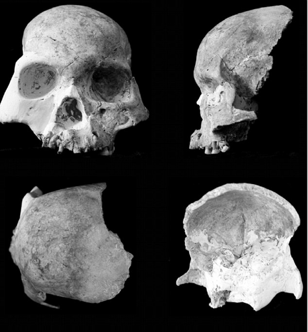 Analysis of skulls in the 'Red Deer' cave in China hints that the people might be a new species of humanoid