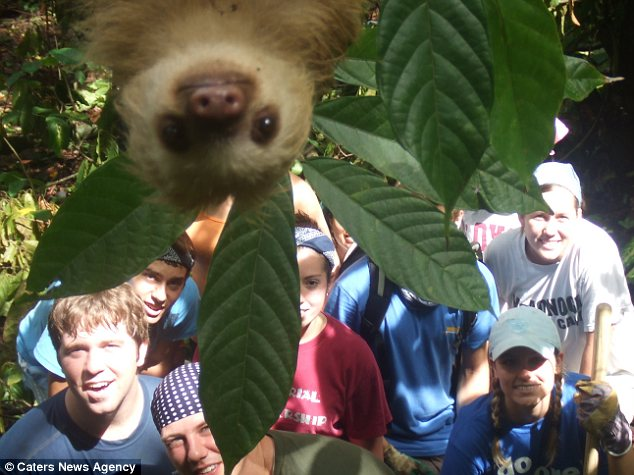 Claims: In these days of Photoshop trickery this picture purporting to show a sloth gatecrashing a holiday snap in the jungle may be too good to be true