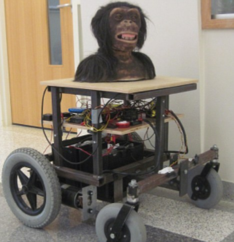 Robobonobo: They've been designed to help our hairy cousins communicate with us - but some may find them a bit scary