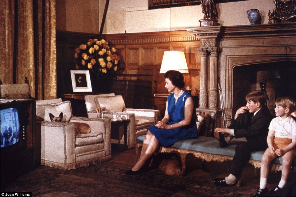 Family viewing: The Queen - along with her corgis - sitting next to Andrew and Edward to watch TV at Sandringham in 1969